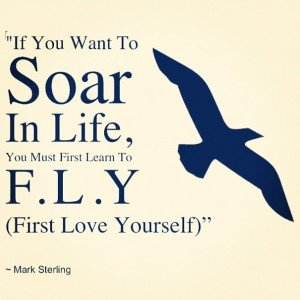 If you want to SOAR
